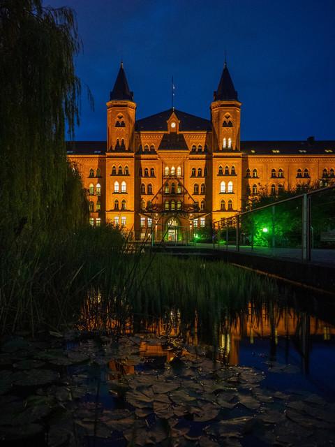 Celle (6) | Celle und Umgebung