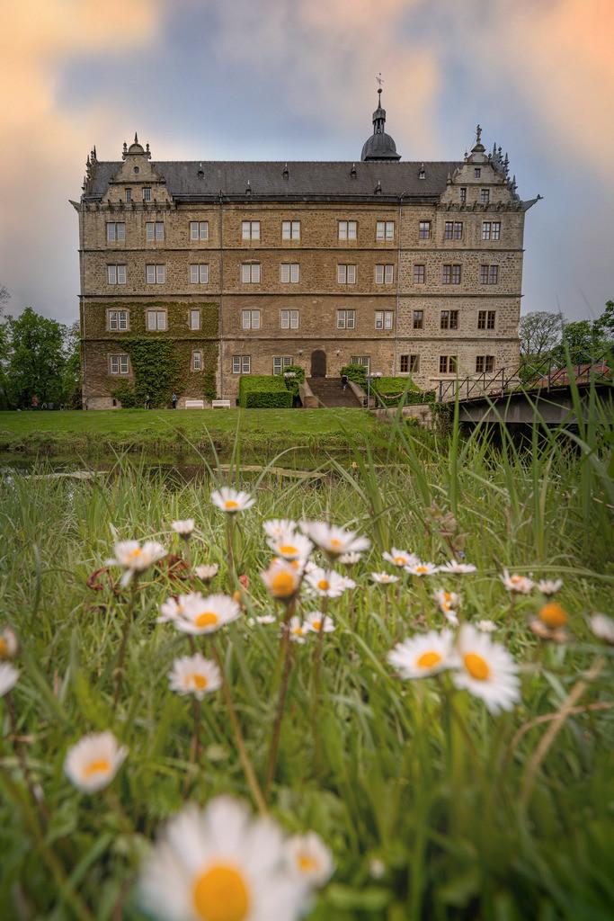 Sommer am Schloss Wolfsburg