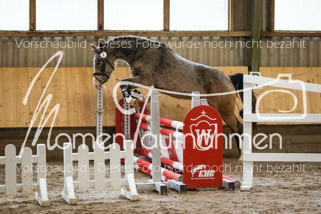 Freispringen-Pony-3j-24