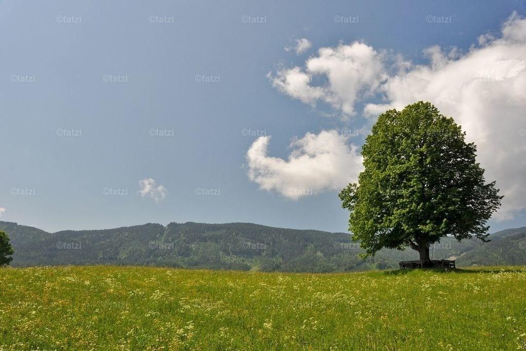 landschaft-heil-geist_5-11_038_1