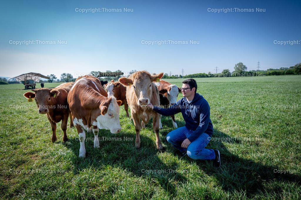 DSC_9902 | Bensheim, Schwanheim, FamilieSchweikert in Schwanheim nach 50 Jahren Viehhaltung jetzt mit ihren Rindern auf die Weiden, ,, Bild: Thomas Neu