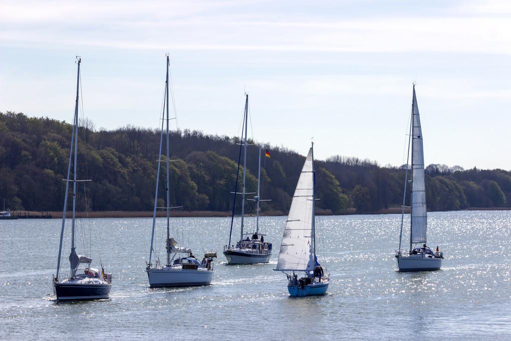 Lindaunis an der Schlei | Segelboote auf der Schlei