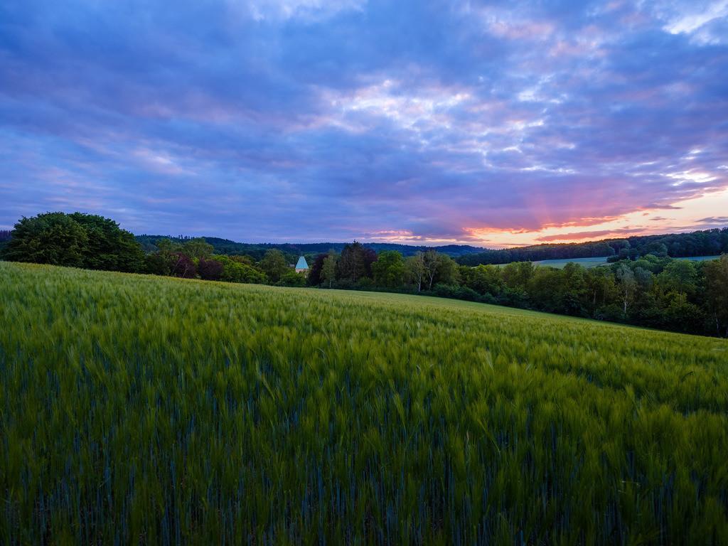 Frühlingsabend in Kirchdornberg | Frühlingsabend in den Feldern bei Kirchdornberg.