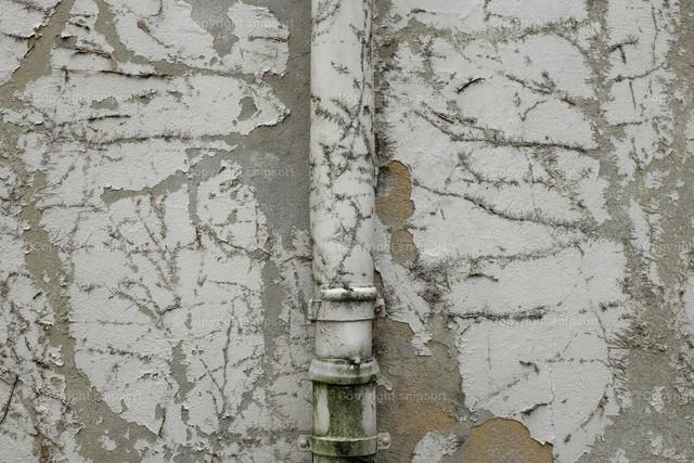 Renovierbedürftige Hausfassade mit einem Regenwasserrohr | Abgeblätterter Putz und Spuren von Efeu am Putz einer alten Hausfassade mit einem in der gleichen Struktur erscheinenem Regenwasserrohr.