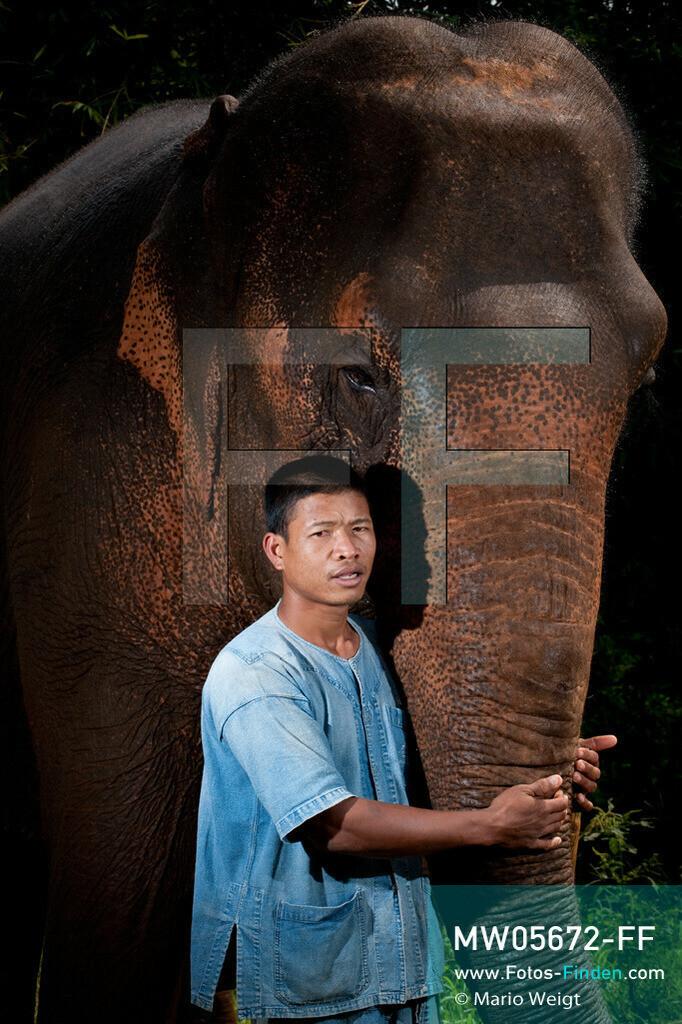 MW05672-FF   Thailand   Goldenes Dreieck   Reportage: Mahut und Elefant - Ein Bündnis fürs Leben   Mahut Chet und Elefant Wong   ** Feindaten bitte anfragen bei Mario Weigt Photography, info@asia-stories.com **