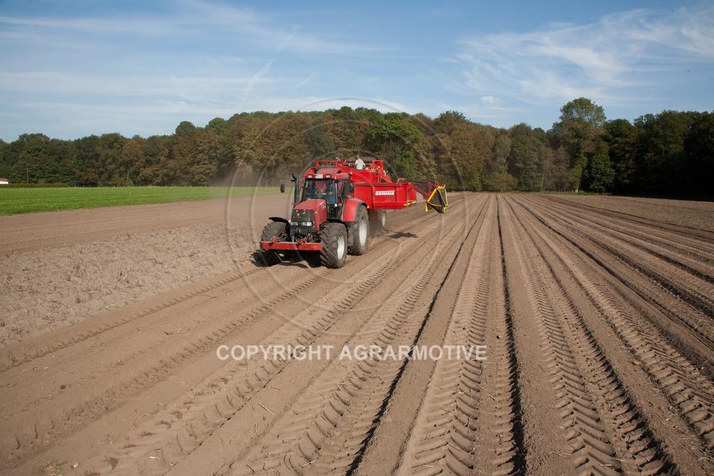 20110929-IMG_5906 | Ernte auf einem Kartoffelfeld - AGRARBILDER