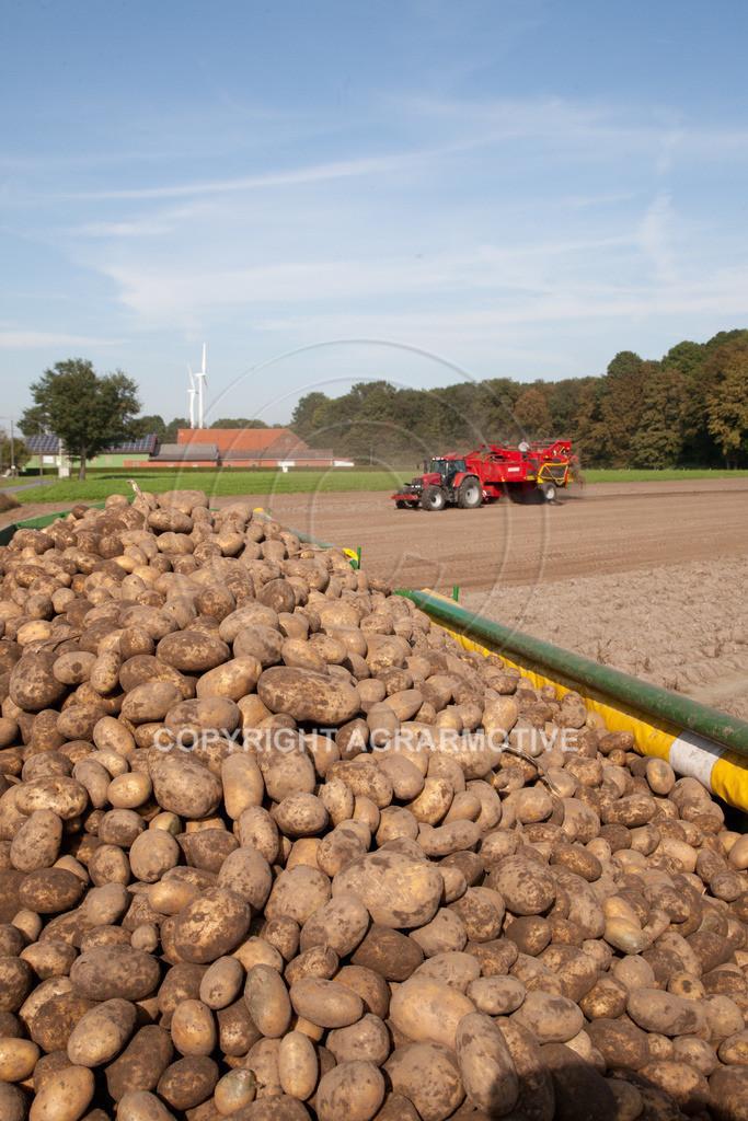 20110929-IMG_5956   Ernte auf einem Kartoffelfeld - AGRARBILDER
