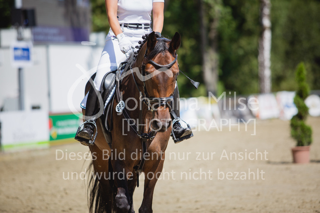 200819_Delbrück_Sprpf-A_2_1-265 | Delbrück Masters 2020 Springpferdeprüfung Kl. A** 4-6jährige Pferde
