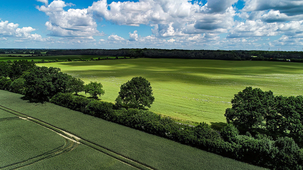 Wolkenschatten | Wolkenschatten auf einem Feld bei Steinhorst, Stormarn