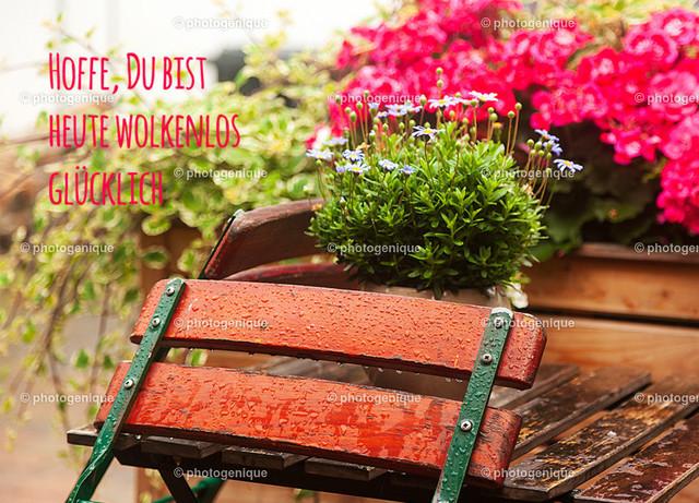 Postkarte Hoffe, Du bist heute wolkenlos glücklich | Postkarte zeigt eine Gartenszene nach dem Regen und den Spruch: Hoffe, Du bist heute wolkenlos glücklich.