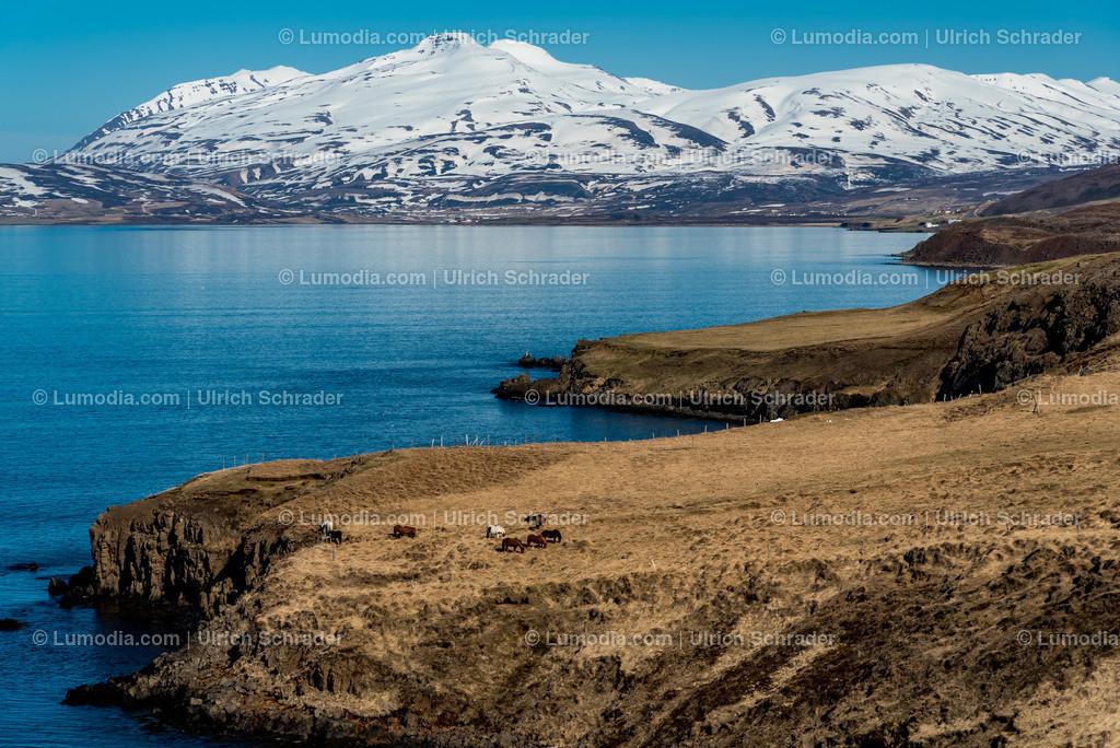 10354-10011 - Akureyri _ Island