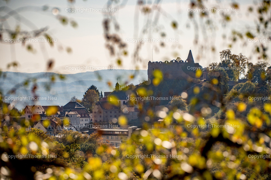 DSC_2253   Herbstliches Lindenfels, Panorama mit Burg,
