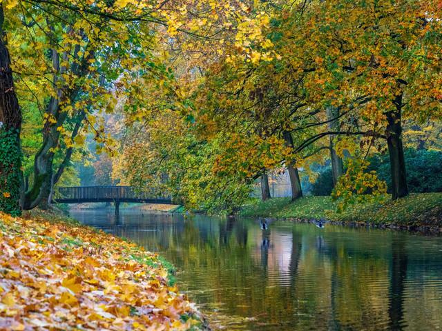 Celle 23.10.2020 (1) | Celle und Umgebung