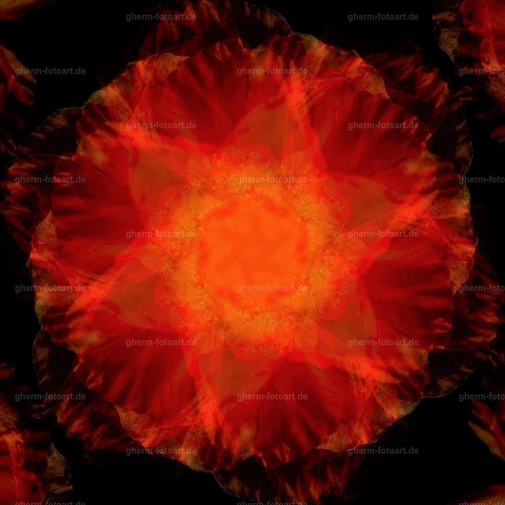 IMG00156-LR-korr-q-lmnr-kaleidoskop-8 (2)