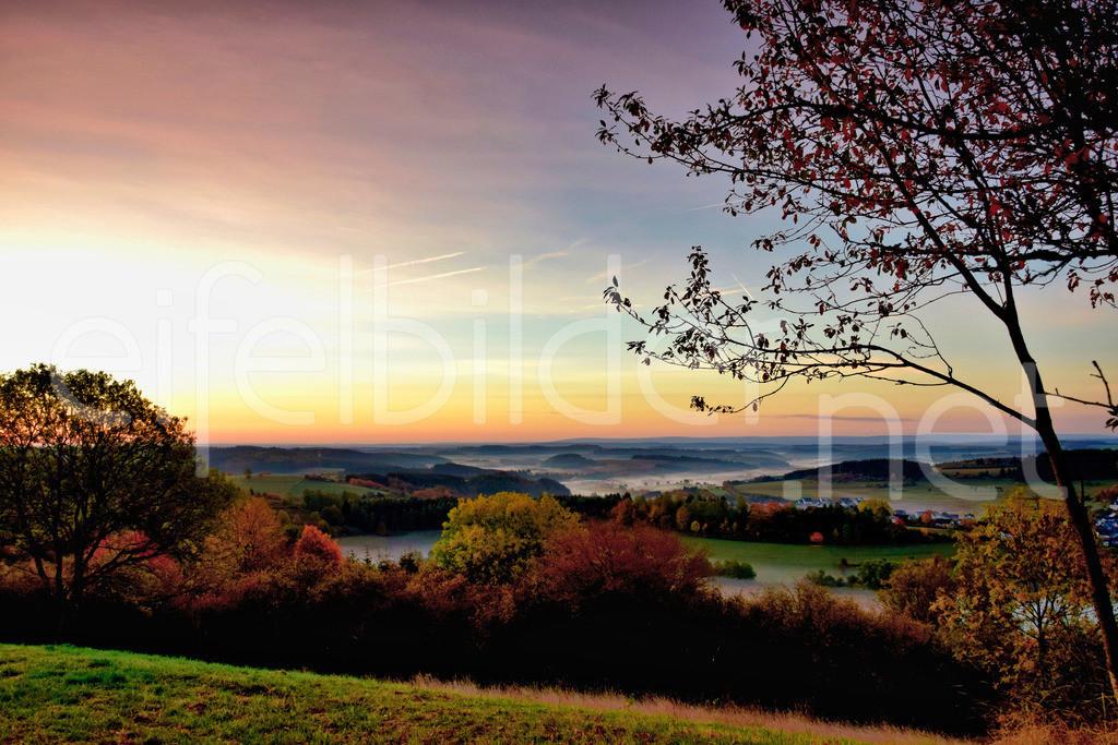 Morgenstimmung | Landschaft bei Schalkenmehren (Daun, Vulkaneifel)