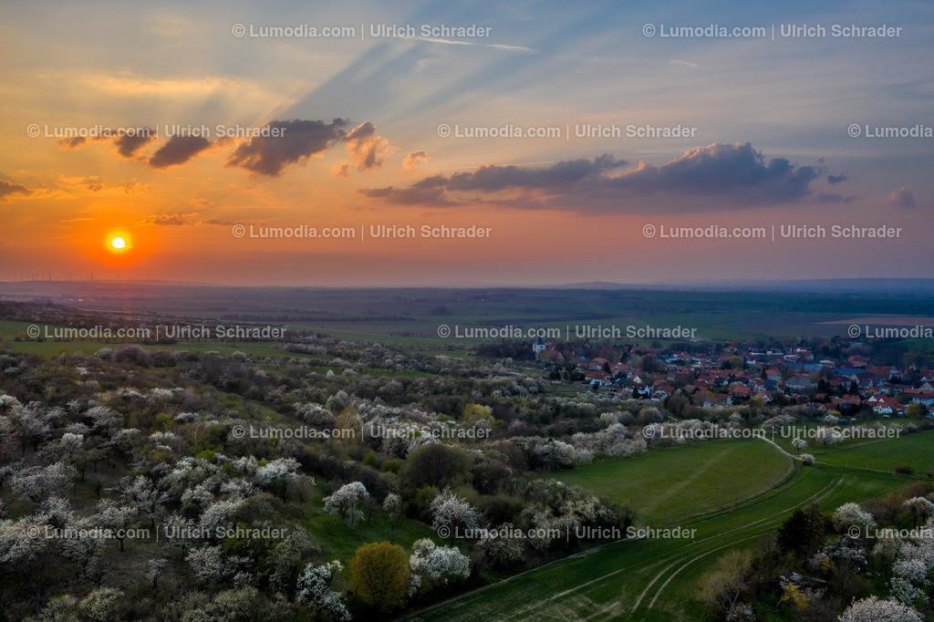10049-50236 - Eilenstedt am Huy