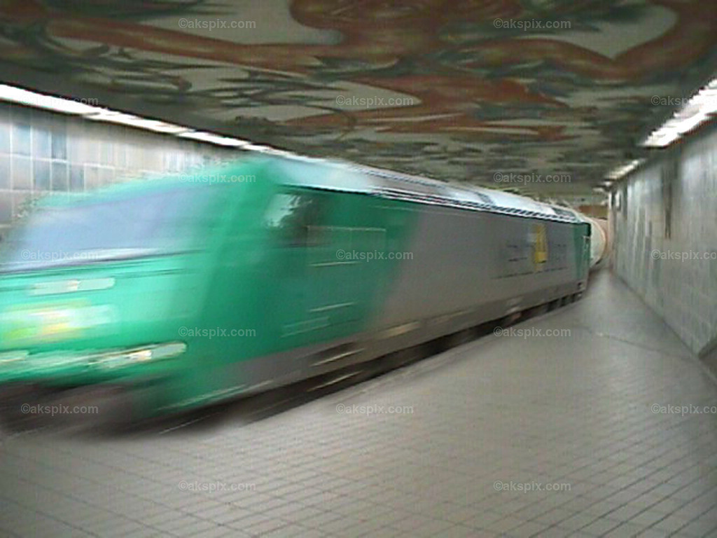 der_Zug_in_der_Station_3