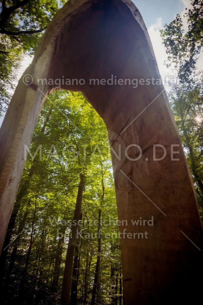 Wildpark-Kaiserslautern_20210918_1341