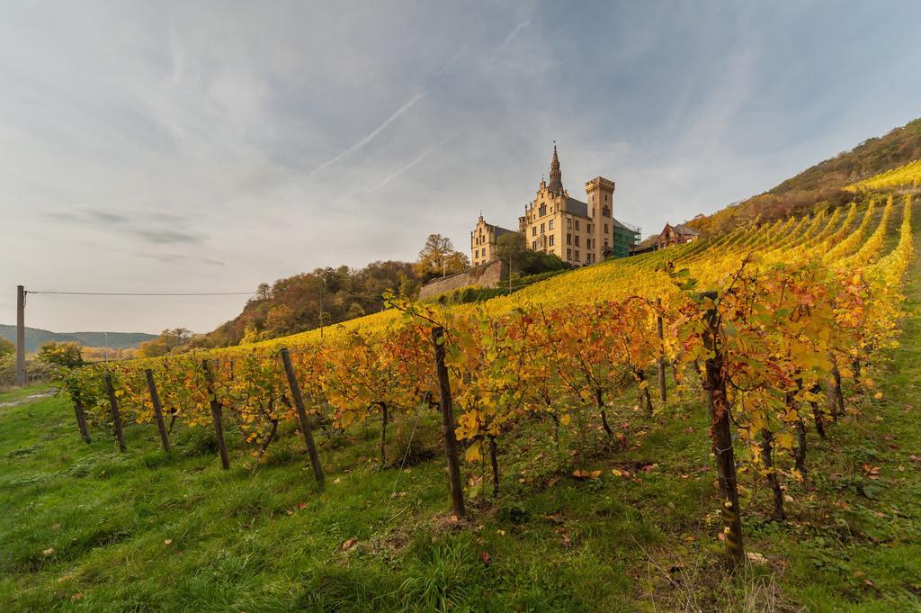 Schloss Arenfels   Die Serie 'Leuchtender Rhein' zeigt den Rhein in leuchtenden Farben.