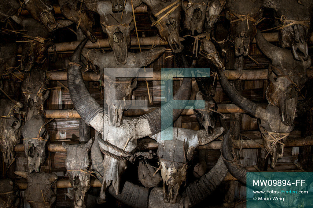 MW09894-FF | Myanmar | Mindat | Reportage: Mindat im Chin State | Bizarre Trophäensammlung an einem Haus der Volksgruppe der Chin im Bergdorf Loute Pe. Meist wurden die Tiere wie der Mithun (Gayal) oder Büffel bei schamanischen Ritualen oder besonderen Feierlichkeiten geopfert. Jagd war ein wichtiger Teil im täglichen Leben der Chin-Männer.   ** Feindaten bitte anfragen bei Mario Weigt Photography, info@asia-stories.com **