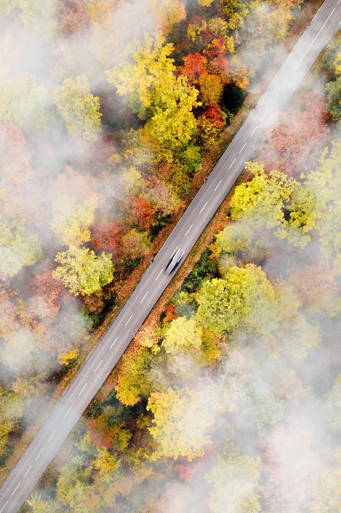 Autumnal journey