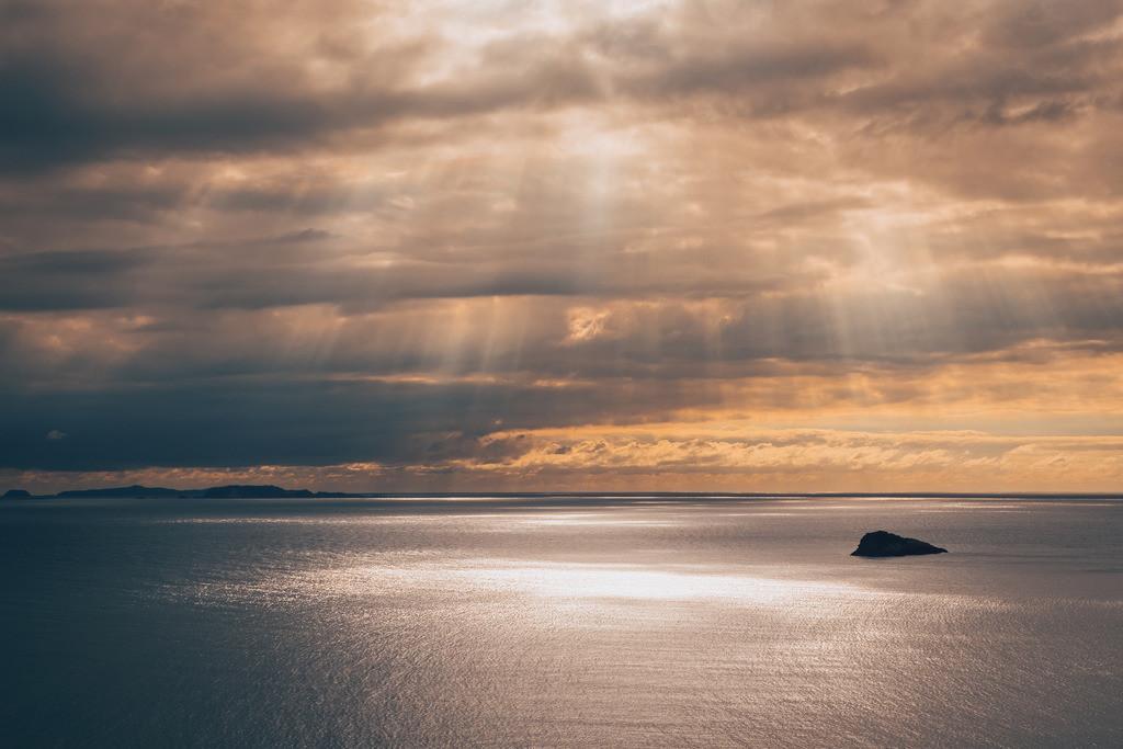 Morgenstimmung am Weg zur Cathedral Cove | Morgenstimmung am Weg zur Cathedral Cove