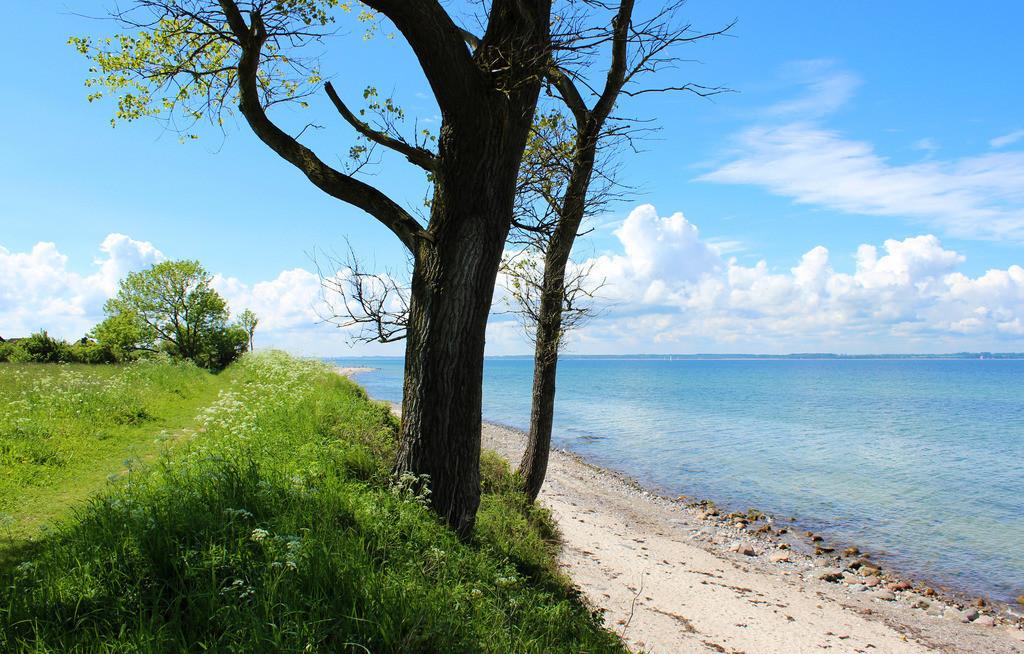 Strand in Krusendorf | Strand in Krusendorf im Frühling