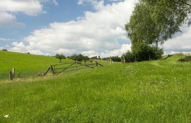 Landschaft im Sommer und aufziehendes Unwetter.  | Landschaft mit dicken Wolken. Ein Unwetter zieht auf. Grüne Wiesen, Bäume und im hintergrung ein Kirchturm eines Dorfes.