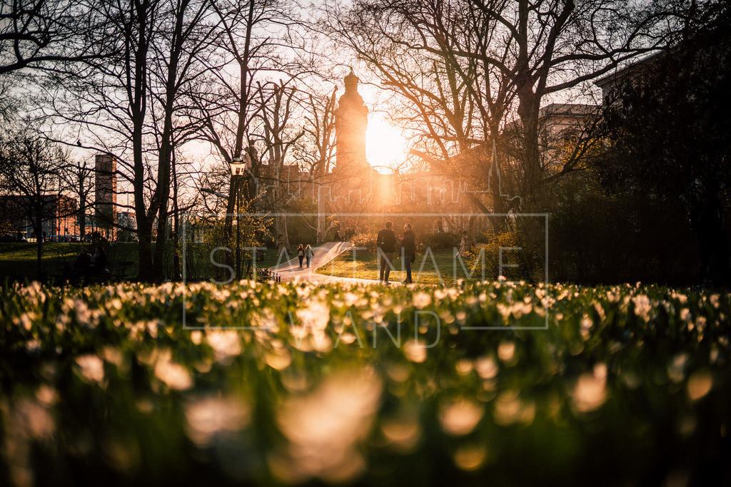Sonnenzeit Leipzig | Neues Rathaus Leipzig. Der Winter geht, das Frühjahr kommt. Zeit für Sonne.