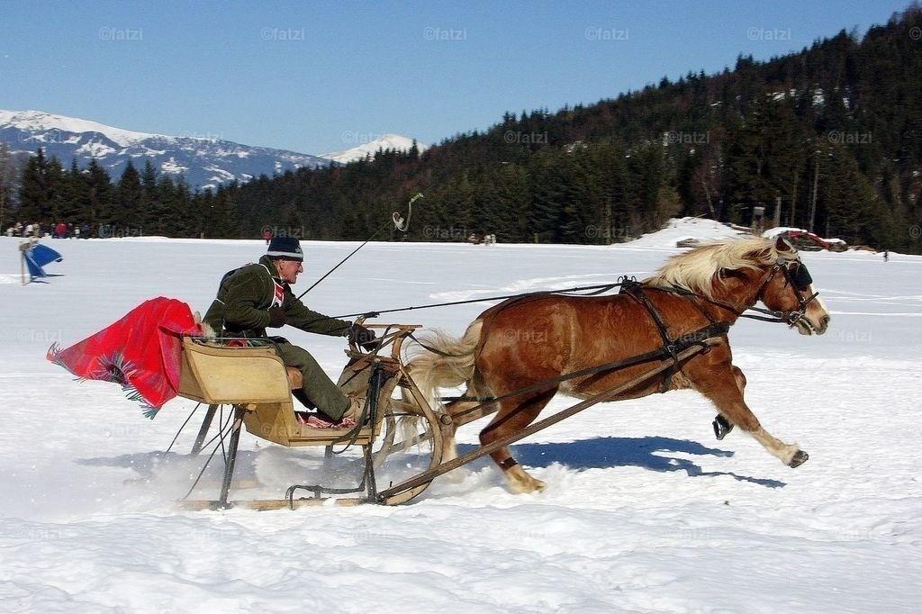 pferdeschlitten-2.06-041