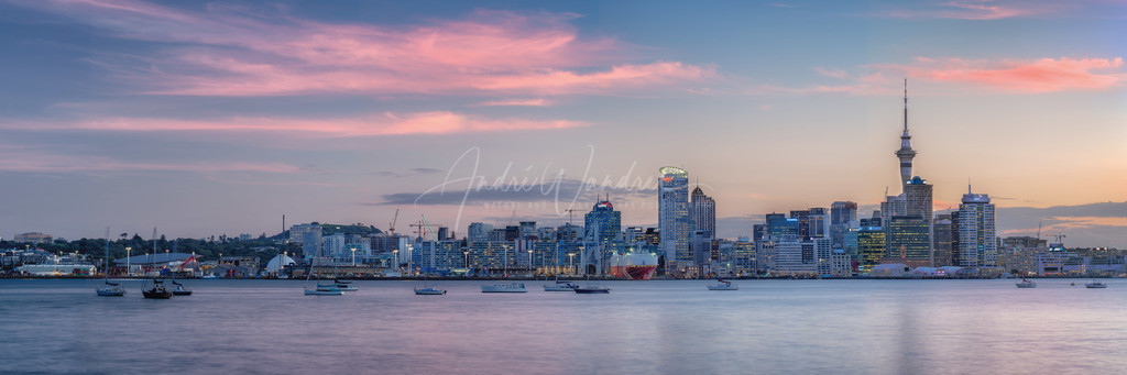 Auckland-Panorama