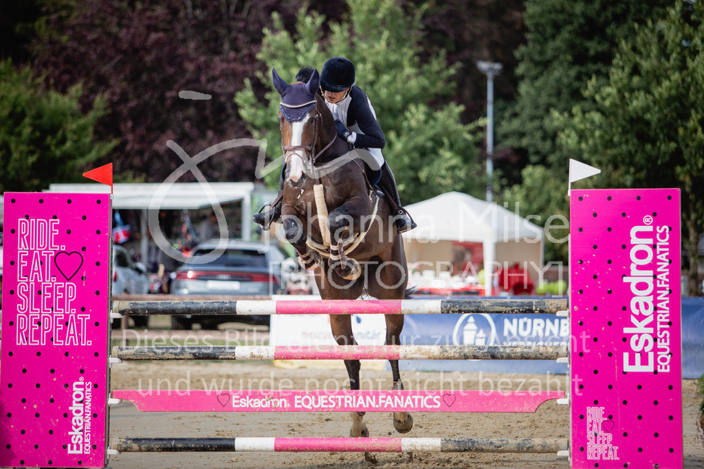 190801_BST_Springpferde-M_5-7J-424 | Braker Sommerturnier 2019 Springpferdeprüfung Kl. M* 5-7jährige Pferde
