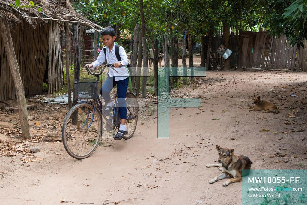 MW10055-FF | Kambodscha | Siem Reap | Reportage: Sombath erkundet Angkor | Zur Schule fährt Sombath fünf Kilometer mit dem Rad. Der achtjährige Sombath lebt in Kambodscha im Dorf Anjan, sechs Kilometer westlich von Siem Reap entfernt. In seiner Freizeit nimmt ihn manchmal sein Onkel in die berühmte Tempelanlage von Angkor mit. Besonders mag er die riesigen Wurzeln der Kapokbäume, die auf den uralten Mauern wachsen. Seine Lieblingstempel in Angkor sind Ta Prohm, Banteay Kdei und Preah Khan.  ** Feindaten bitte anfragen bei Mario Weigt Photography, info@asia-stories.com **