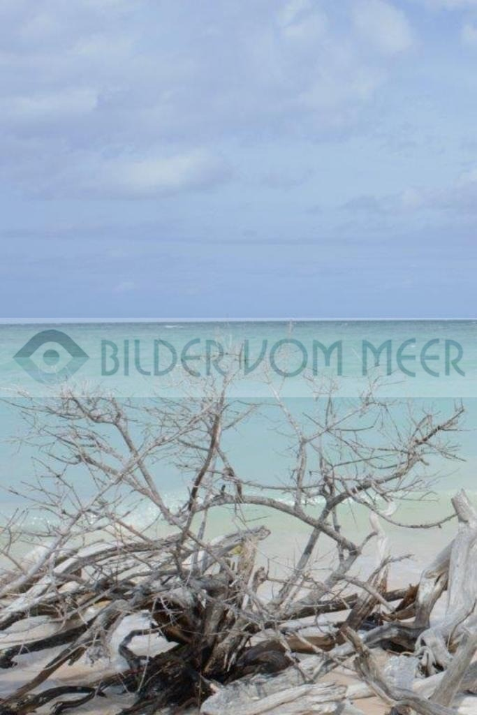 Fotoausstellung Bilder vom Meer | Kuba Strand ladet zum Bade