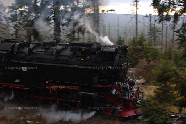 Historische Lok während der Fahrt | Eine historische Dampflok fährt durch den Wald