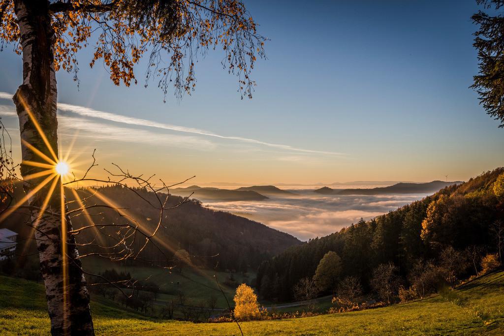 Sonnenuntergang | Sonnenuntergang bei den Nillhöfen, die Geroldseck ragt aus dem Herbstnebel hervor