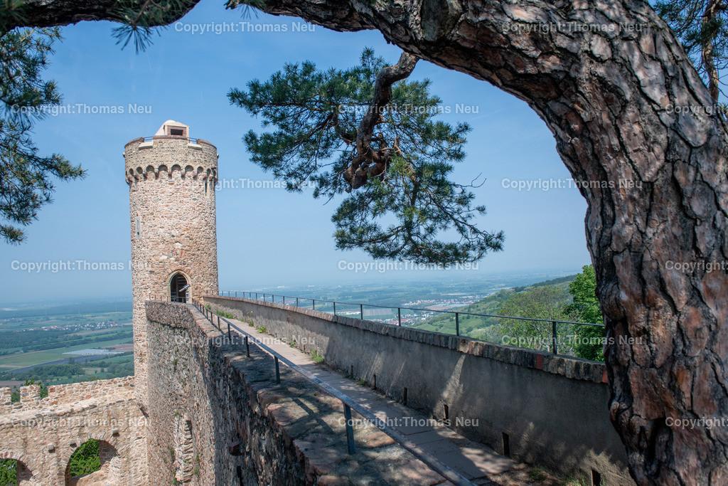 DSC_0079 | Bensheim, Auerbach, Schloss Auerbach, Burg, Mittelalter, Ruine, ,, Bild: Thomas Neu