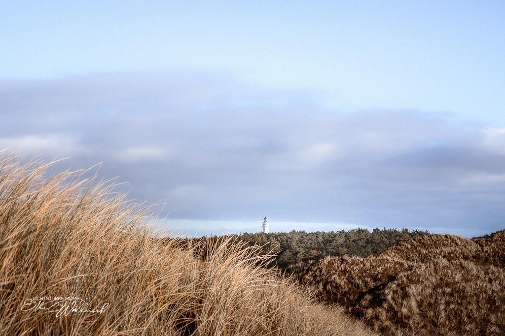 Leuchtturm in der Ferne | Dünenlandschaft am Roten Kliff, Sylt