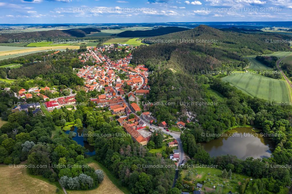 10049-50475 - Langenstein bei Halberstadt