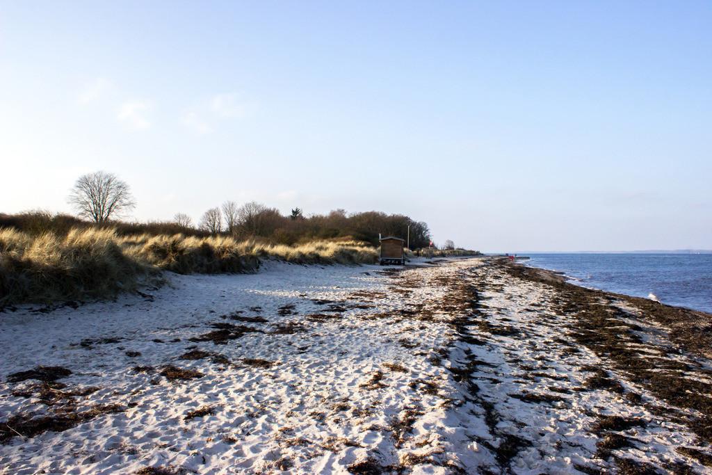 Strand in Grönwohld | Strand in Grönwohld im Winter