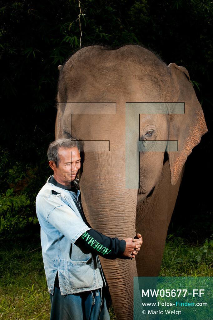 MW05677-FF   Thailand   Goldenes Dreieck   Reportage: Mahut und Elefant - Ein Bündnis fürs Leben   Mahut In und sein Asiatischer Elefant Bua Tong  ** Feindaten bitte anfragen bei Mario Weigt Photography, info@asia-stories.com **