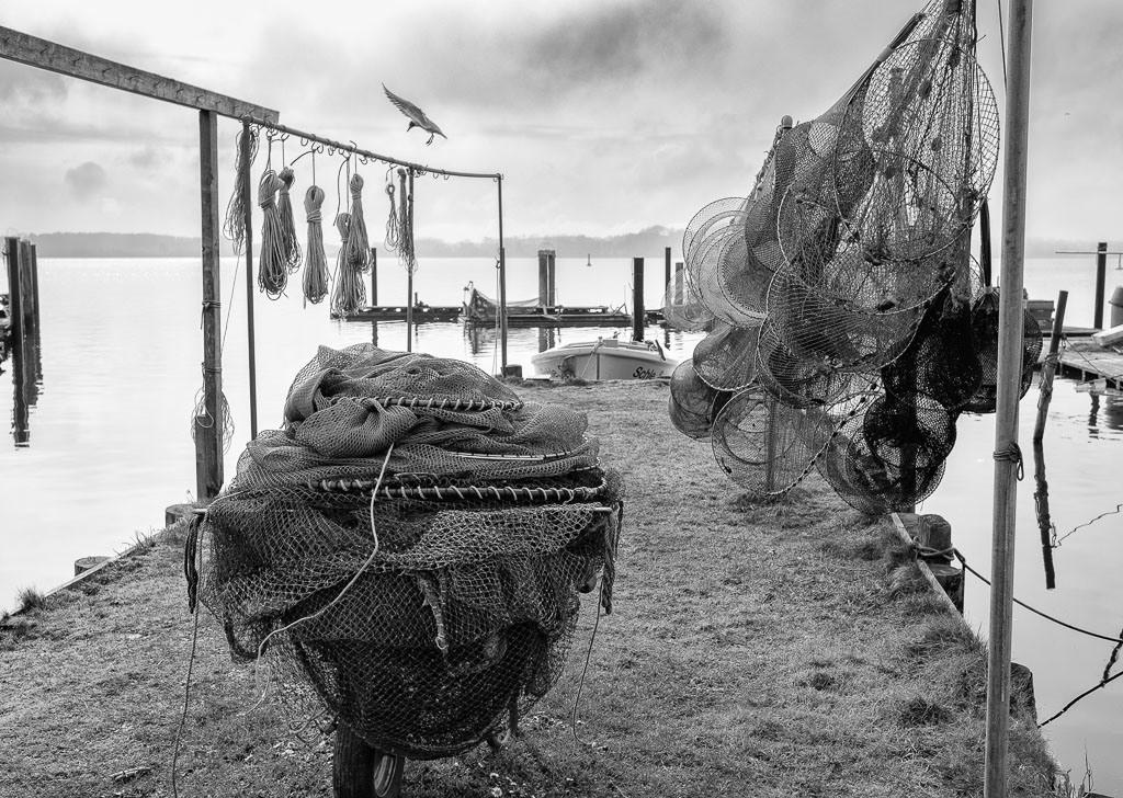 Landungsbrücke am Holm in Schleswig © Holger Rüdel | Die Landungsbrücken am Holmer Strand sind grasbewachsene Anleger der Schleswiger Fischer. Hier machen sie seit Jahrhunderten ihre Boote fest und lagern ihr Material. Durch schwimmende Pontons sind einige der Landungsbrücken im Laufe der Zeit erweitert worden.