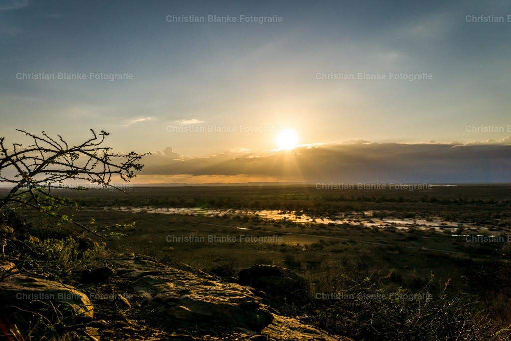 Namibia | Namib Desert