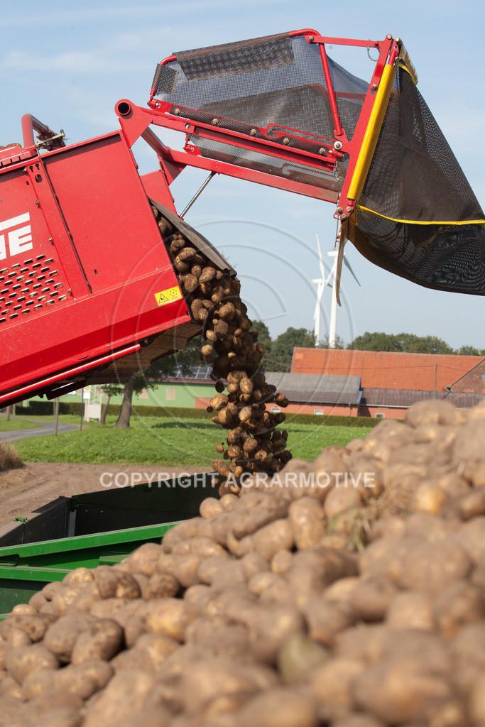 20110929-IMG_6041 | Ernte auf einem Kartoffelfeld - AGRARBILDER