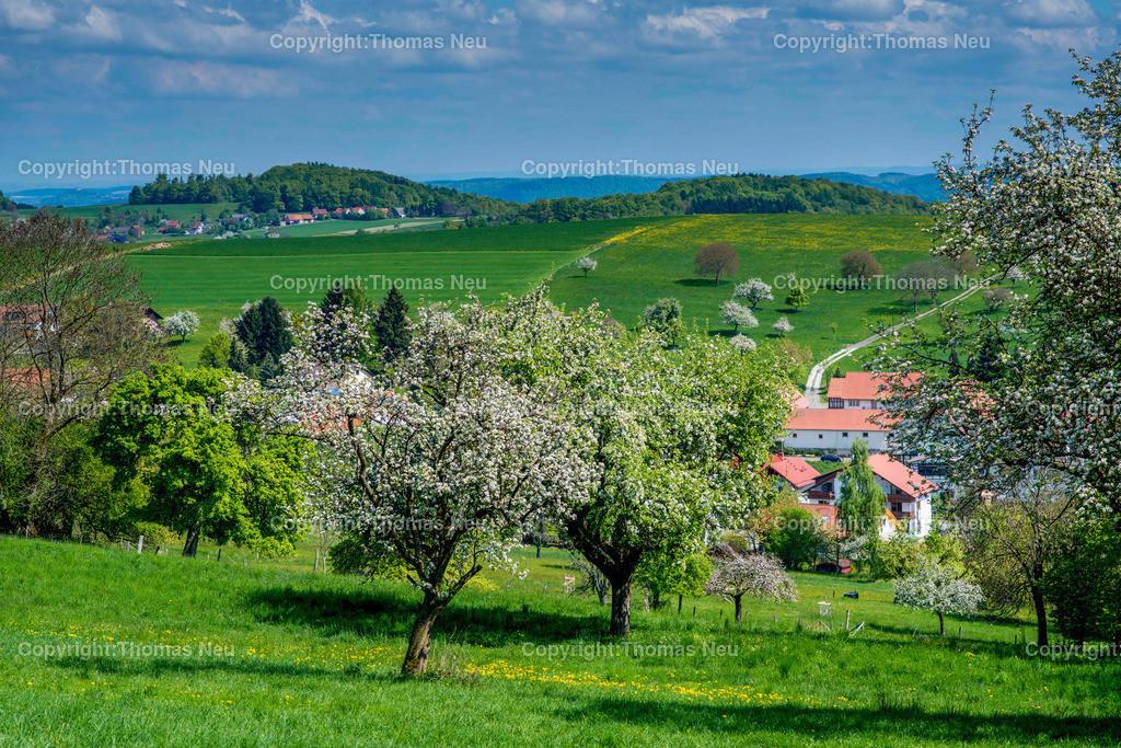 04_April_Odenwald_hessische_beergstrasse_Winterkasten | Lindenfels, Winterkasten, Fruehling im Odenwald, Schmuckbild, Bild: Thomas Neu