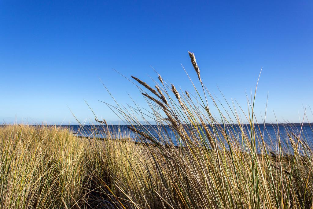 Strand in Karlsminde | Karlsminde im Herbst