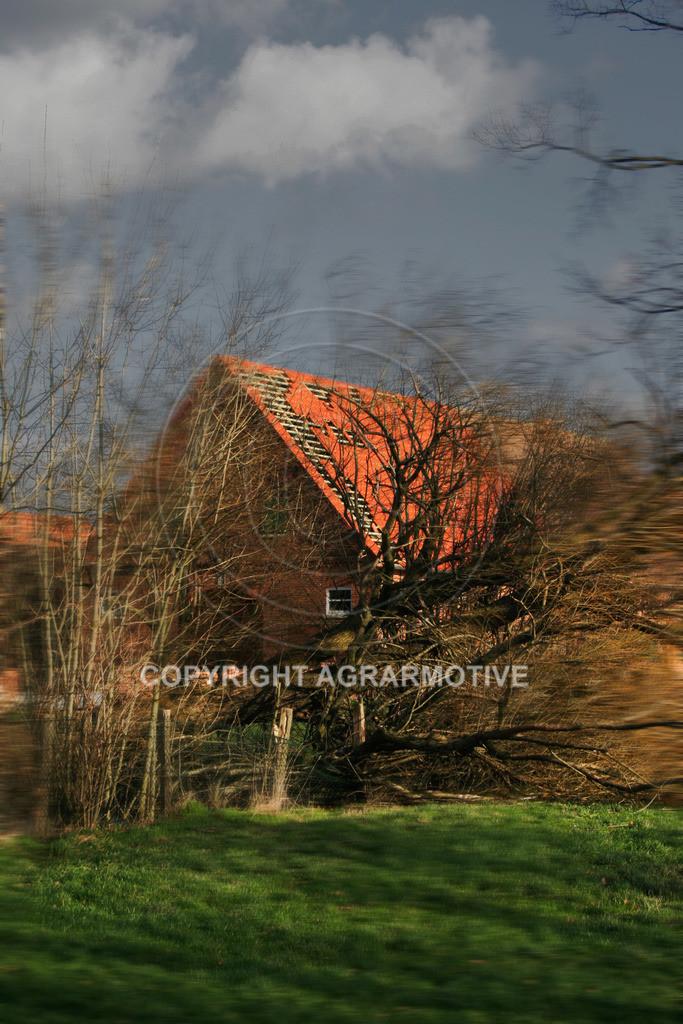 210107-142135-7788   Sturmschäden - AGRAR Bildagentur
