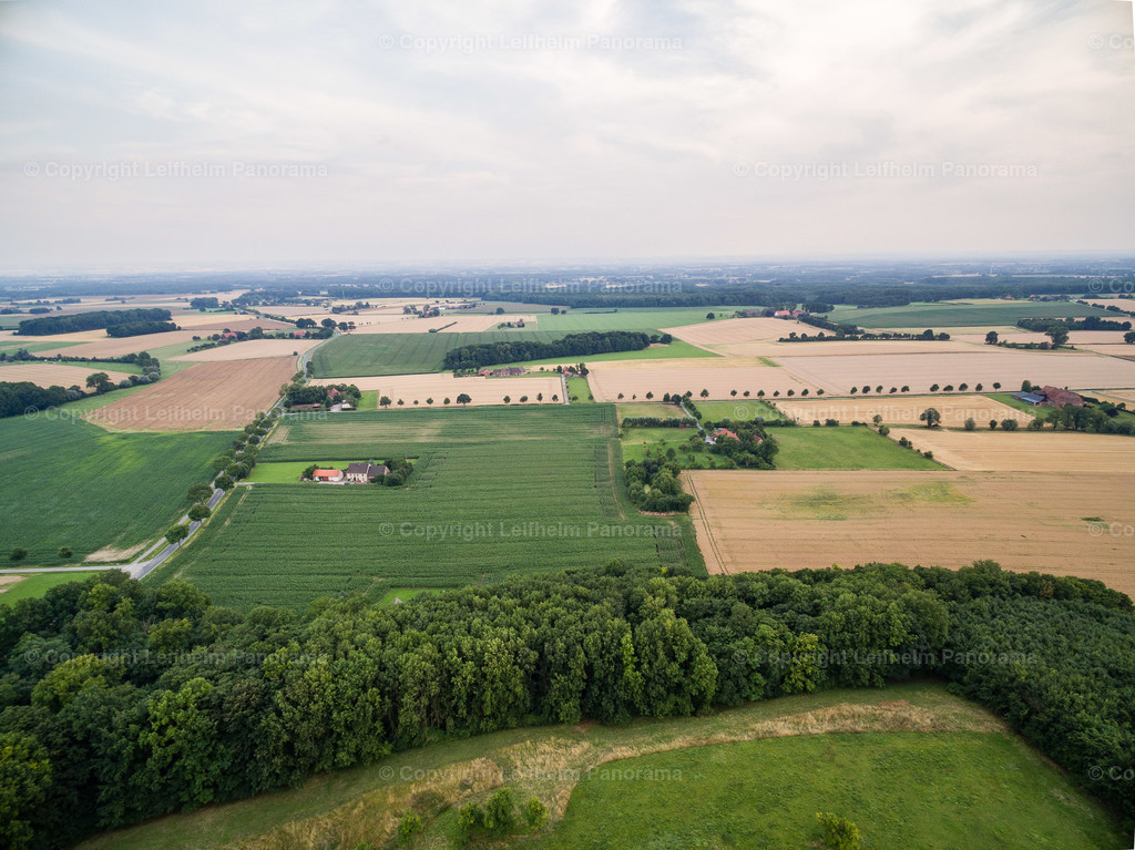 15-07-24-Leifhelm-Panorama-Windmuehle-am-Hoexberg-13