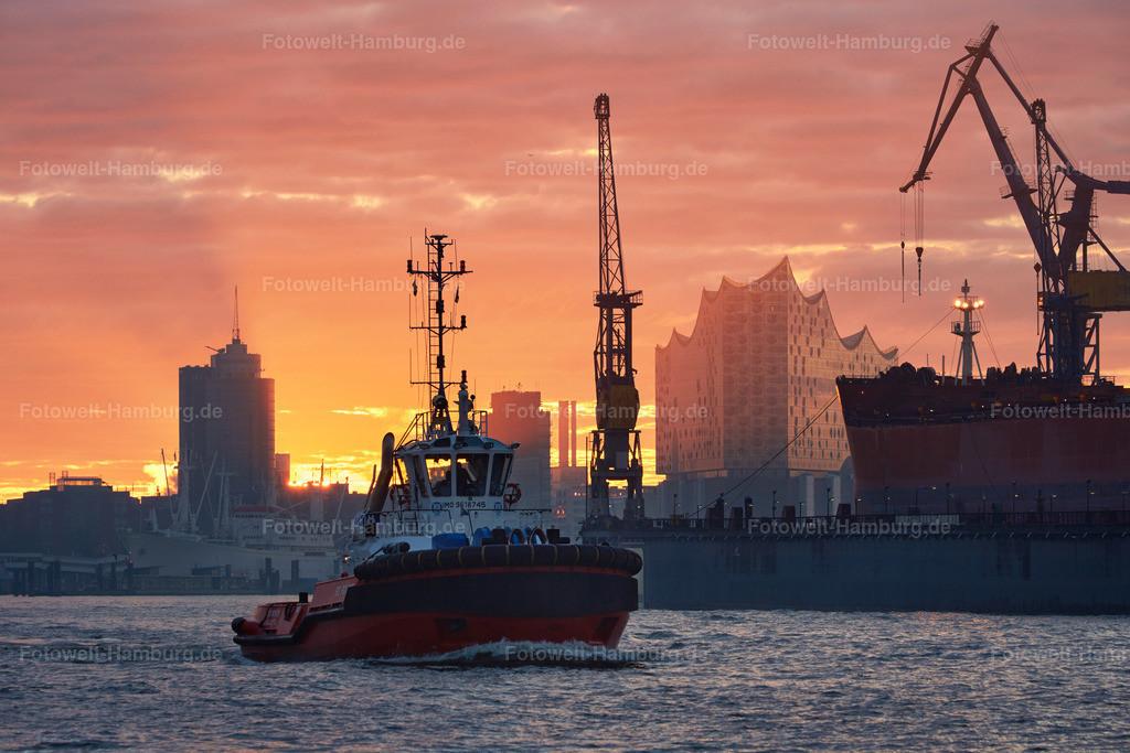 11586942 - Morgenstimmung im Hamburger Hafen | Ein Schlepper im Morgenlicht im Hamburger Hafen