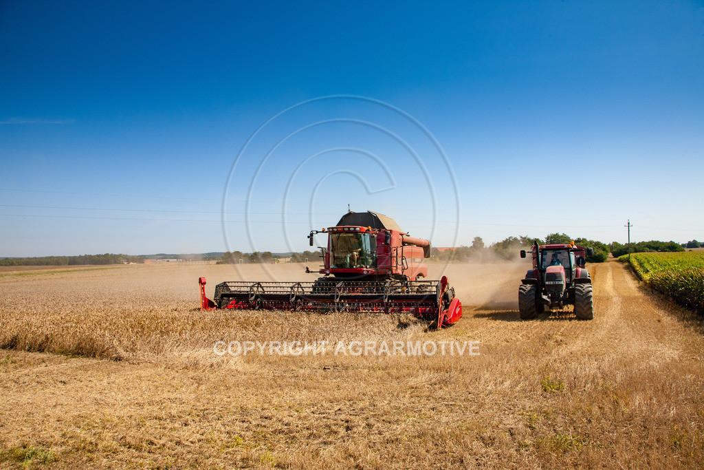 20110804_0341 | Mähdrescher bei der Weizenernte